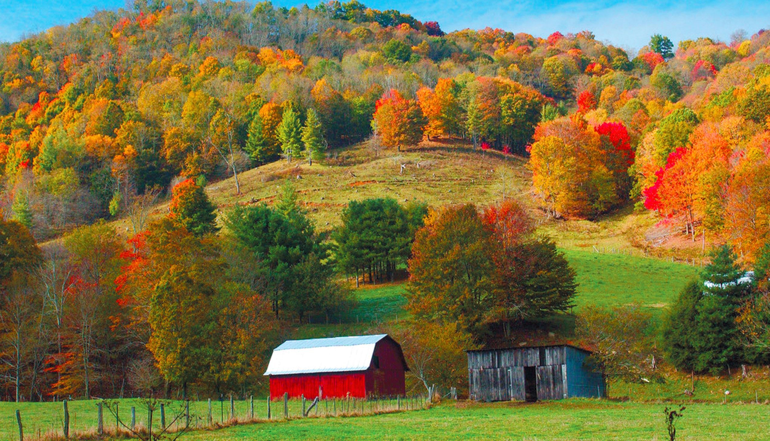 Farm Tour of Western North Carolina | Edible Piedmont